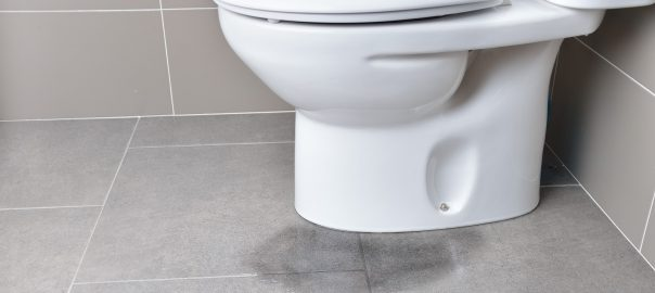 A toilet with a minor leakage